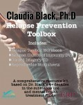 Relapse Prevention Toolbox - Front Cover