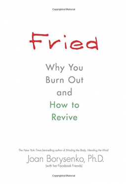 Fried Why You Burn Out and How to Revive - Book