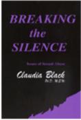 Breaking the Silence DVD
